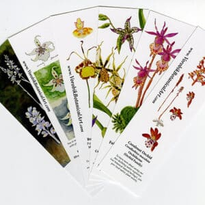 Bookmark Set: Orchids