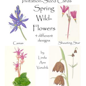 Spring Wildflowers: Invitation-Sized 4 Pack Notecards